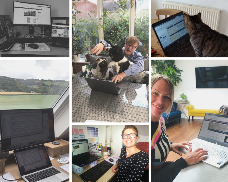 A collage of photos of people working from home, some smiling to the camera, one reaching over dogs to be able to type, and a cat looking at a computer screen
